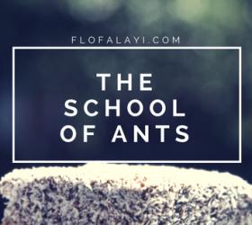 School Of Ants